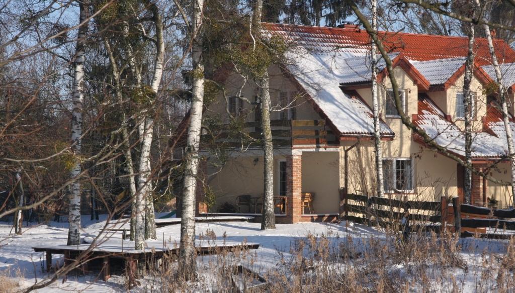 Rajski Staw zimą