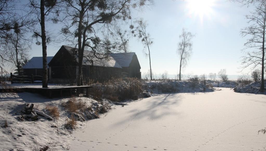 Gospodarstwo w zimowej szacie