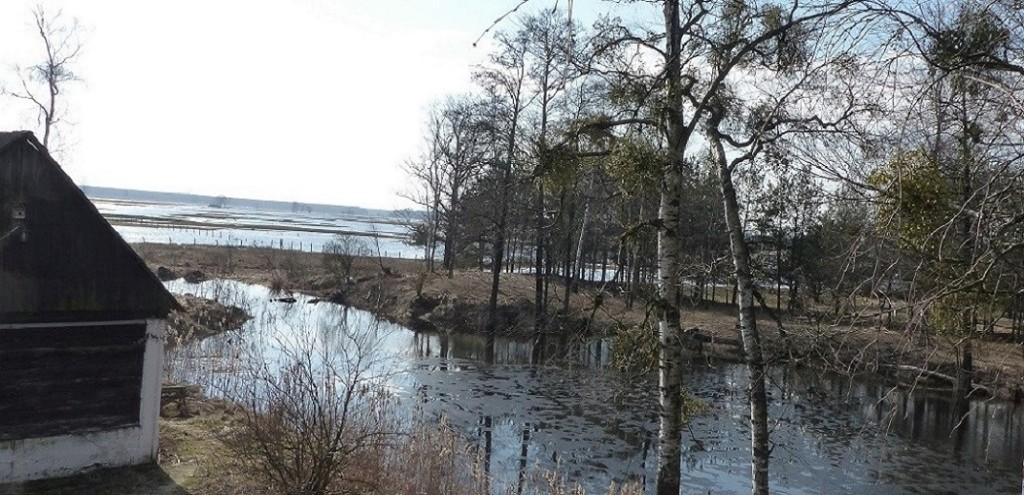 Rajski Staw w klimatach przedwiośnia
